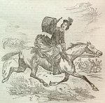 side saddle 3.jpg